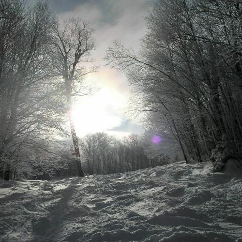 Twilight Snow