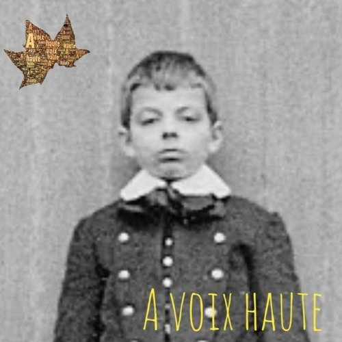 Antoine de Saint Exupery- Le petit Prince - épisode 1. Conteur : Yannick Debain