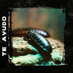"[FREE] WOS x EVLAY Type Beat | Terraza Type Beat | ""TE AYUDO"" | Space Type Beat | Rap instrumental"