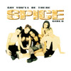 Say You'll Be There (Spice Of Life Mix)