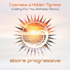Cosmaks & Hidden Tigress - Waiting For You (illitheas Remix)