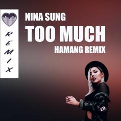 Nina Sung - Too Much (Hamang Remix)