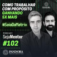 Como Trabalhar com Propósito Ganhando 5x Mais | Podcast Seja Mentor #102