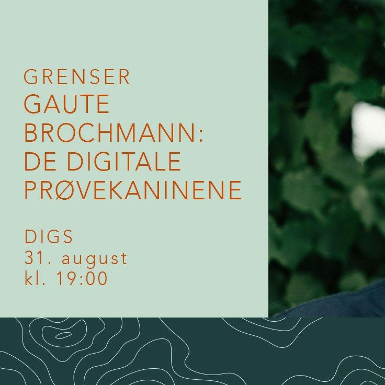 Gaute Brochmann: De digitale prøvekaninene