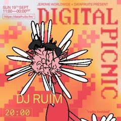 JEROME WORLDWIDE DIGITAL PICNIC - DJ RUIM