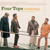 Seven Lonely Nights (Album Version)