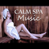 Calm Spa Music – Inner Silence, New Age, Calmness, Massage Music for Aromatherapy, Ocean Waves, Soothing Music, Peaceful Spa, Rain, Nature Sounds