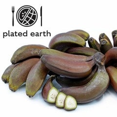 Episode 117 - Food Buzz: History of Red Bananas