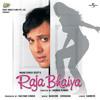 Janam Janam Jo Saath (Raja Bhaiya / Soundtrack Version)