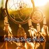 Healing Sleep Music - Sound Therapy and Deep Sleep, Music for Massage, Reiki, Spa, Healing & New Age