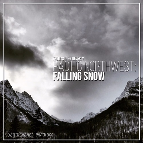 AMB31 Pacific Northwest Falling Snow | SFX Library Demo