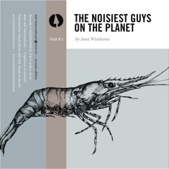 The Noisiest Guys on the Planet, Pt. 2