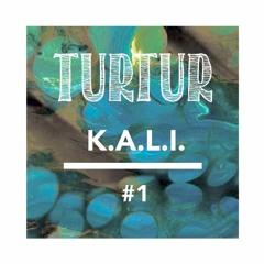 TURTUR & FRIENDS #1 K.A.L.I