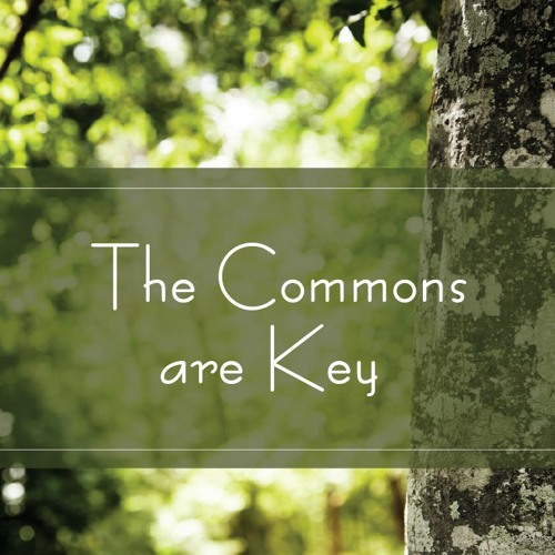 The Commons Are Key
