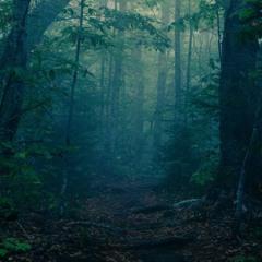 Dark Forest (Pharaon type beat)