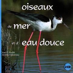 Rousserolle effavartte (Reed Warbler)
