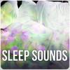 Sleep Sounds – Music Therapy, Lullabies, Sleep Music, Calmness, Nature Sounds, Meditation, Deep Sleep, Relaxation, New Age