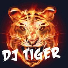 DJ Tiger- Lil Baby mixxxx