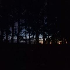 2021.08.29 Deep Creek Dawn. Late Winter. Excerpt 2.