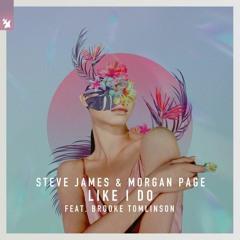 Steve James & Morgan Page feat. Brooke Tomlinson - Like I Do(Ansel van Jiang Remix)