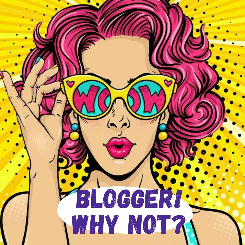 История одного блоггера