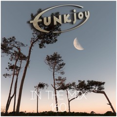 funkjoy - In The Mix 160