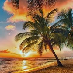 Calypso Sunset (Caribbean Track)