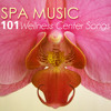 Ultimate Spa Music with Water Sounds
