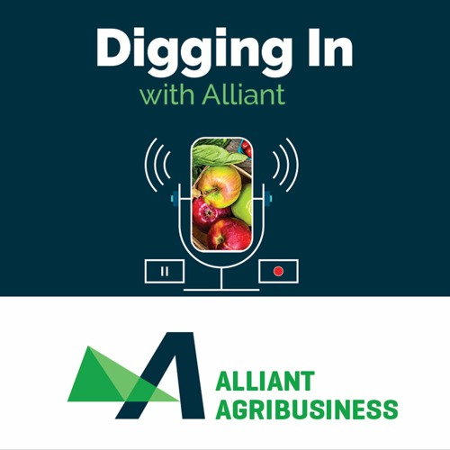 Digging In with Alliant