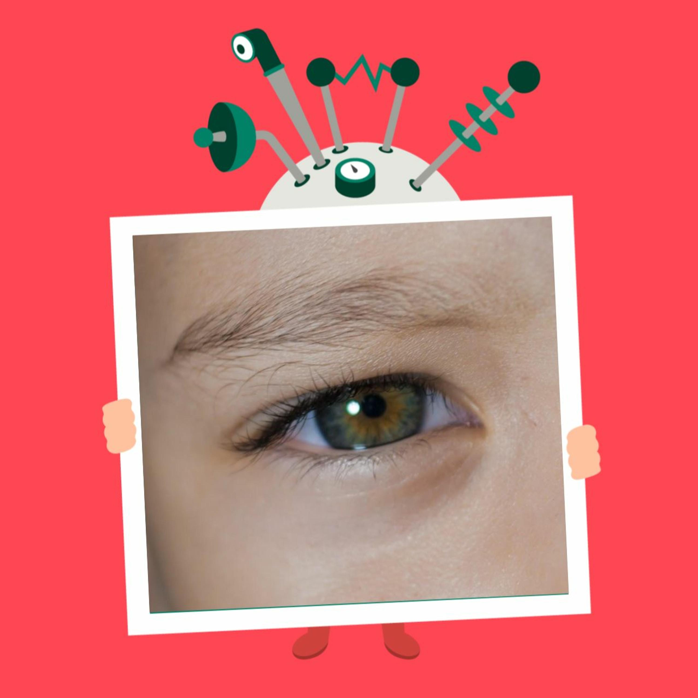 Afsnit 53: Hvordan kan øjne se?