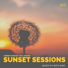 SUNSET SESSIONS - LET ME FEEL AGAIN (Organic Chill)