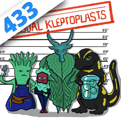 433 - Usual Kleptoplasts, fiction scientoradiophonique