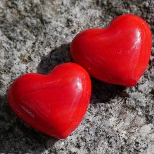 Organspender/in werden?