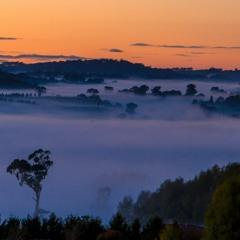 At dawn 2