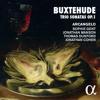 Trio Sonata in A Minor, BuxWV 254