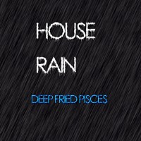 House Rain Artwork