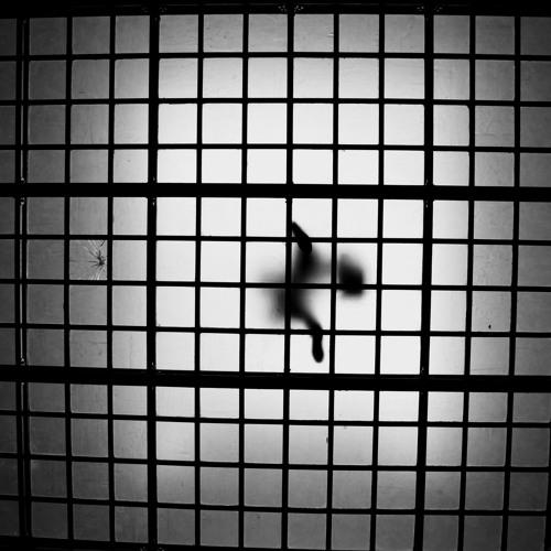 Nouvelles du confinement J5 : 21 mars 2020