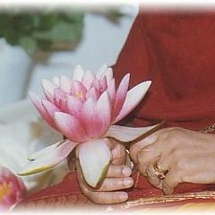 Lotus with 1000 Petals.mp3