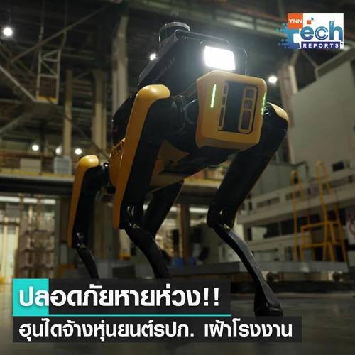 เจ๋ง! ฮุนไดจ้างหุ่นยนต์รปภ. สี่ขาเฝ้าโรงงาน   TNN Tech Reports