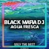 Black Mafia Dj - Agua Fresca 🎵EDM 💿PROGRESSIVE HOUSE 📀2020