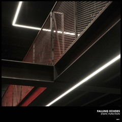 Falling Echoes - Definition [Immaterial Archives]