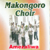 Mwokozi Kafufuka