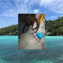 Gomma Bucata Alle Seychelles