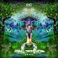 Ital & Amplify - Akna (Sample)