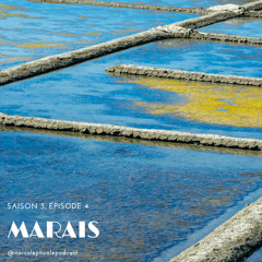 S3E4 - Marais
