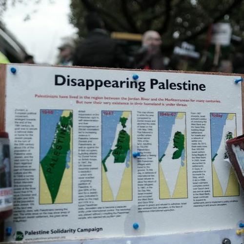 Solidaridad con Palestina hoy