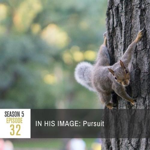 Season 5 Episode 32 - IN HIS IMAGE: Pursuit