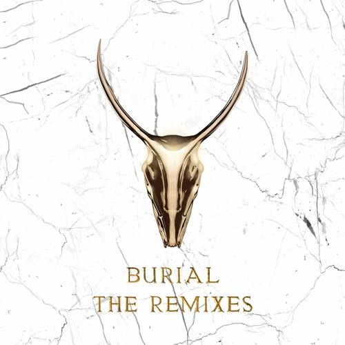 Burial (Skrillex & Trollphace Remix)