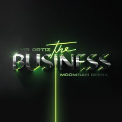 Tiësto - The Business (Mr Ortiz Moombahton Remix)