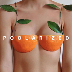 POOLARIZED Vol.28 mixed by MichaelV